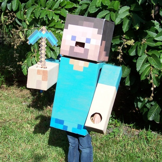 8 DIY Cardboard Costumes for Halloween Lovers - The ...Steve Minecraft Costume Party City