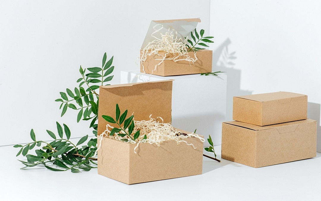 From Beginning to End Biodegradable Packaging Options
