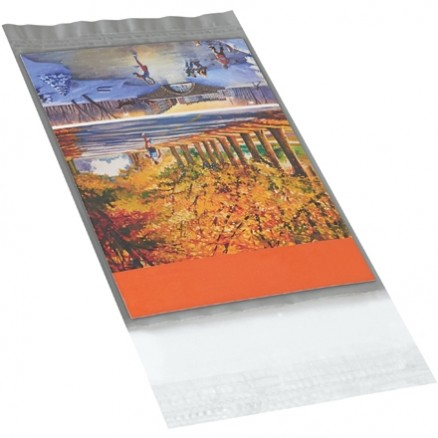 """Poly Mailers, Clear View, 5 x 7"""""""