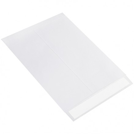 """10 x 13"""" Flat Ship-Lite® Envelopes"""