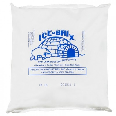 Ice-Brix™ 16 oz. Cold Packs - 6 1/4 X 6 X 1